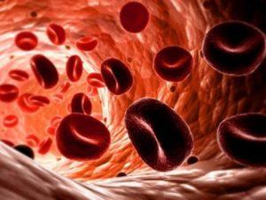 gemoglobin3