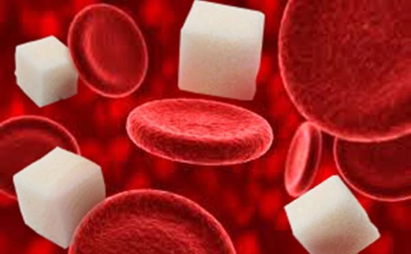 определение сахара холестерина в крови