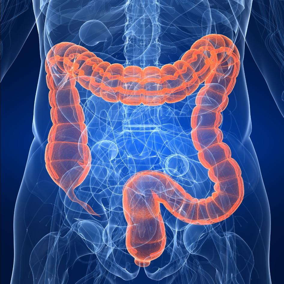 МРТ, томография желудка и пищевода, что это?